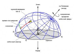 Первичные дирекции схема