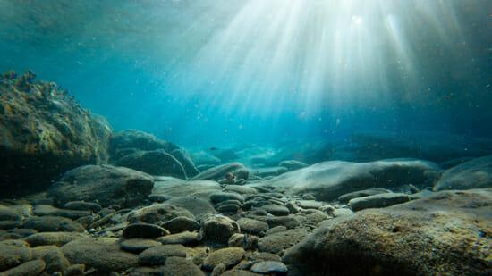 Подводные камни компенсаторики (транскрибация)